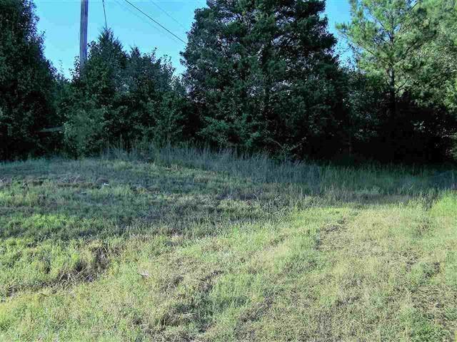 11002 Us 64 Hwy, Arlington, TN 38002 (MLS #10087387) :: Gowen Property Group | Keller Williams Realty