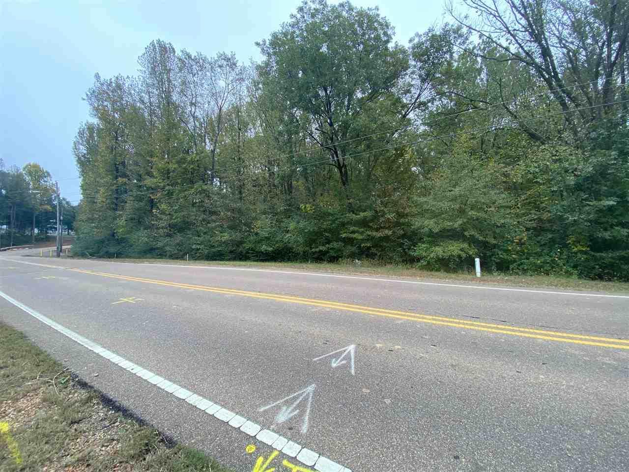 0 Brownsville Rd - Photo 1