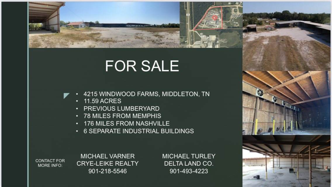 4215 Winwood Farms Loop Rd - Photo 1
