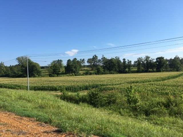 64 Hwy, Bolivar, TN 38008 (#10092170) :: The Wallace Group - RE/MAX On Point
