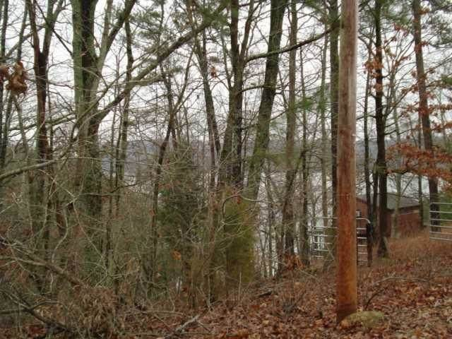 4344 Paradise Dr, Pickwick Lake, AL 35677 (#10094264) :: The Wallace Group - RE/MAX On Point