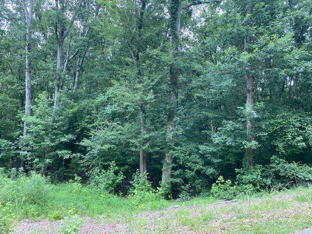 LOT 10-11 Driftwood Rd, Counce, TN 38326 (#10105438) :: All Stars Realty