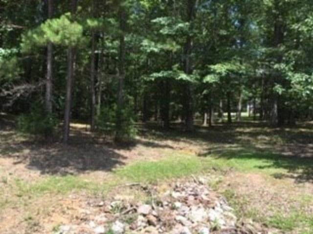 LOT 33 Driftwood Rd, Counce, TN 38326 (MLS #10105444) :: The Justin Lance Team of Keller Williams Realty