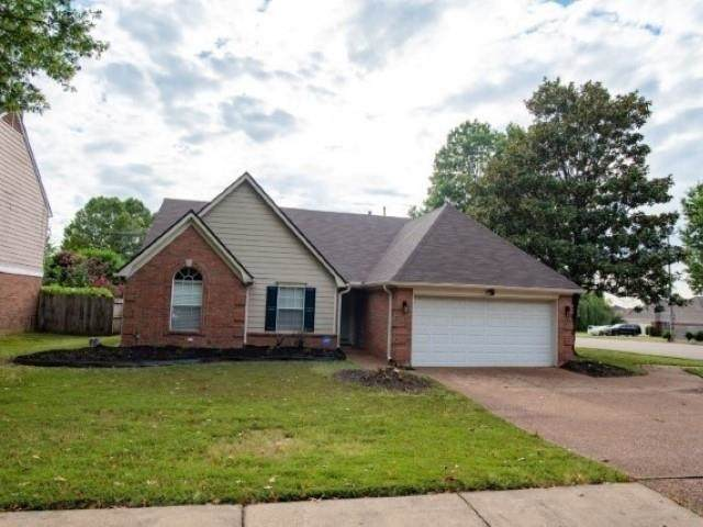 7161 Raleigh-Lagrange Rd, Memphis, TN 38018 (MLS #10109765) :: Your New Home Key