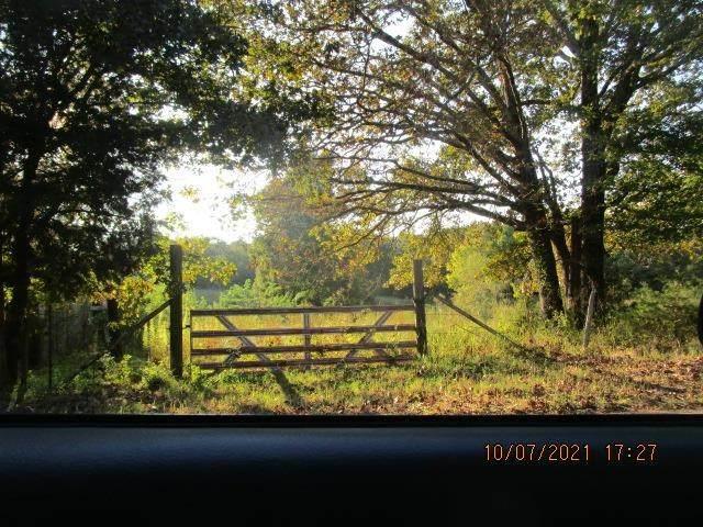 Hubert Manul Rd, Michie, TN 38357 (MLS #10110288) :: Gowen Property Group | Keller Williams Realty