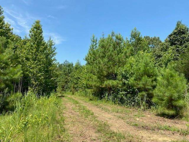 000 Fortune Rd, Unincorporated, TN 38057 (#10110641) :: The Melissa Thompson Team