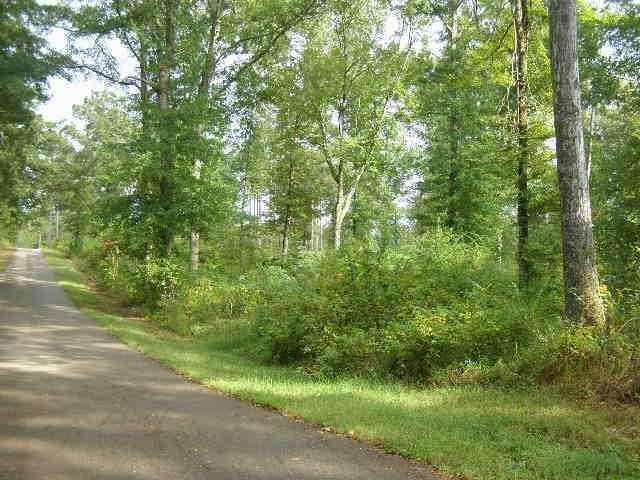 12 Cr 334 Rd, Iuka, MS 38852 (#9939467) :: RE/MAX Real Estate Experts