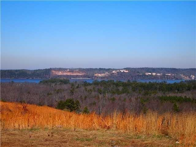 8 Awesome View Cir, Counce, TN 38326 (#9967834) :: The Wallace Team - RE/MAX On Point