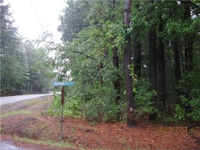 0 Magnolia Dr, Unincorporated, TN 38057 (#9975057) :: The Wallace Team - RE/MAX On Point