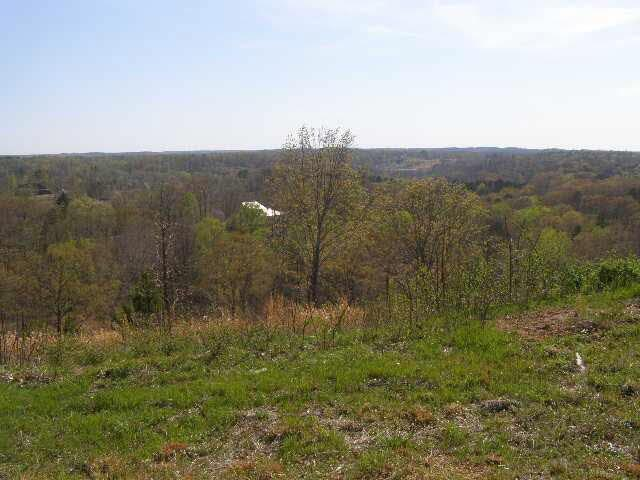10 Turkey Knob Ln, Counce, TN 38326 (#9994596) :: The Wallace Team - RE/MAX On Point