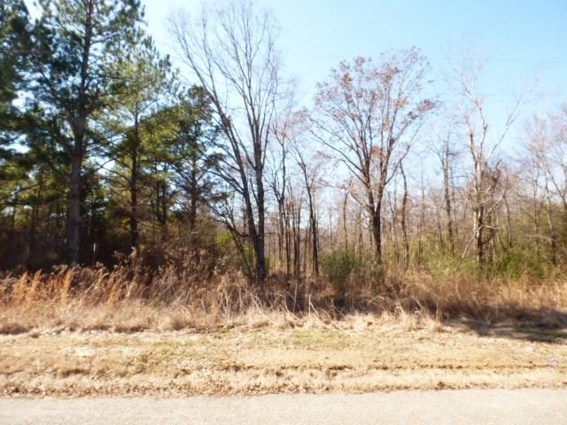 LOT 1 Anderson Rd, Unincorporated, TN 38057 (#9995500) :: The Wallace Team - RE/MAX On Point