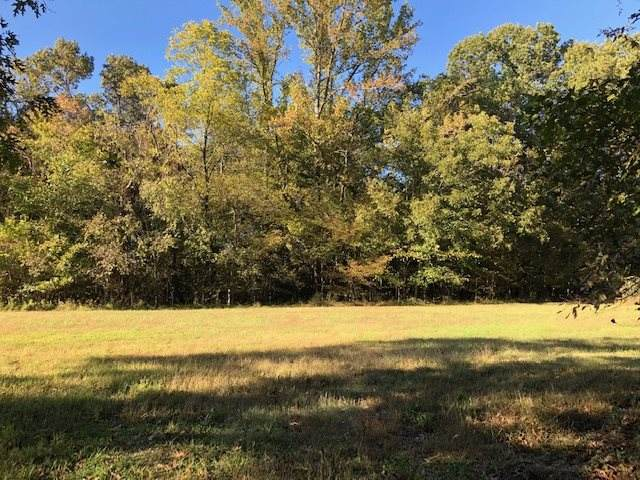10336 Pleasant Ridge Rd, Unincorporated, TN 38002 (#10070754) :: The Wallace Group - RE/MAX On Point