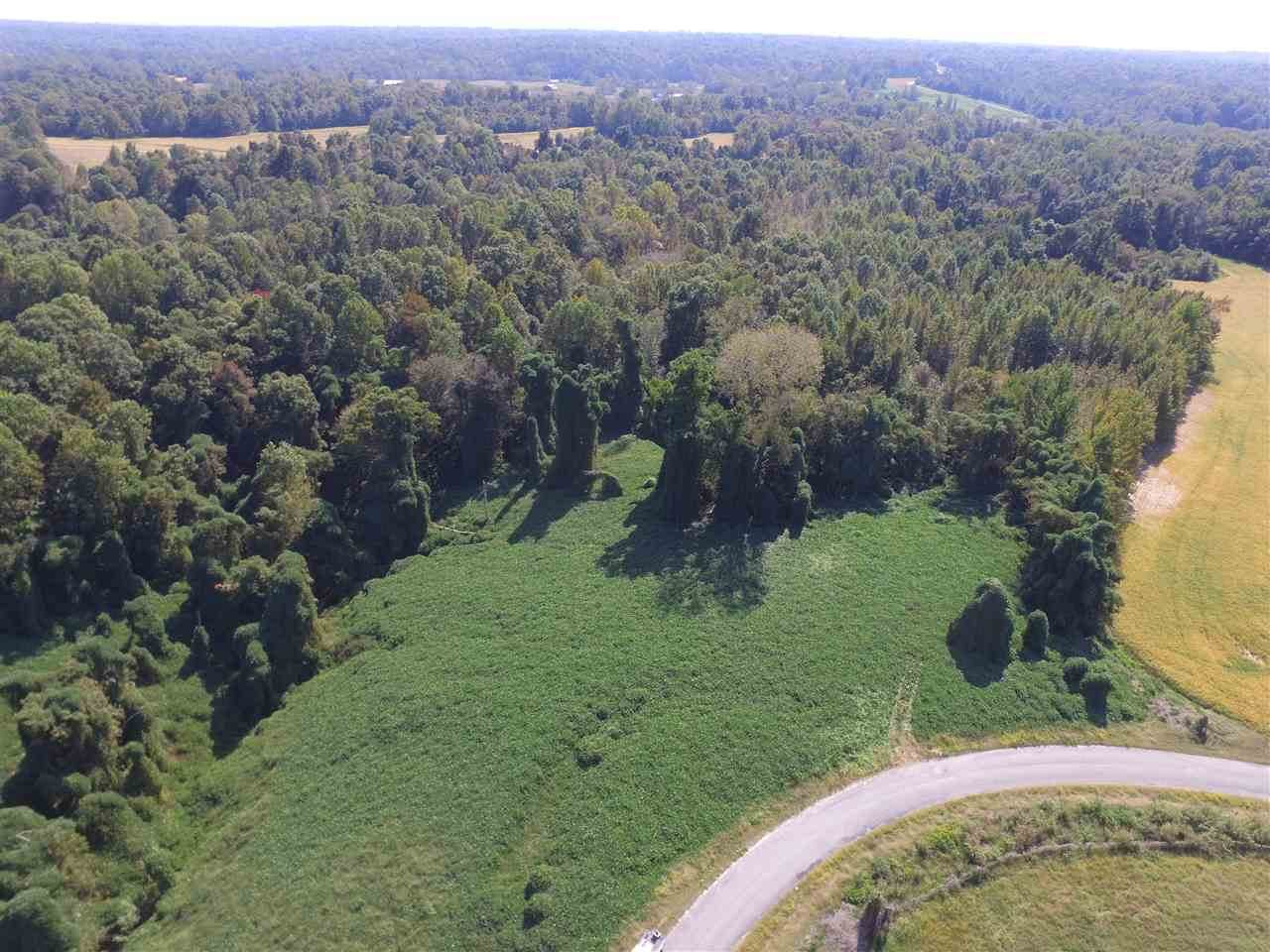 000 Jeff Webb Rd - Photo 1