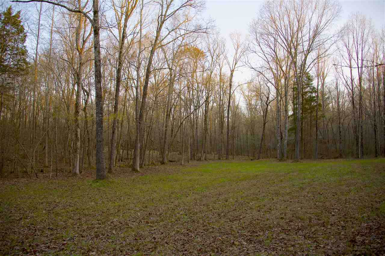 5315 Country Club Rd - Photo 1