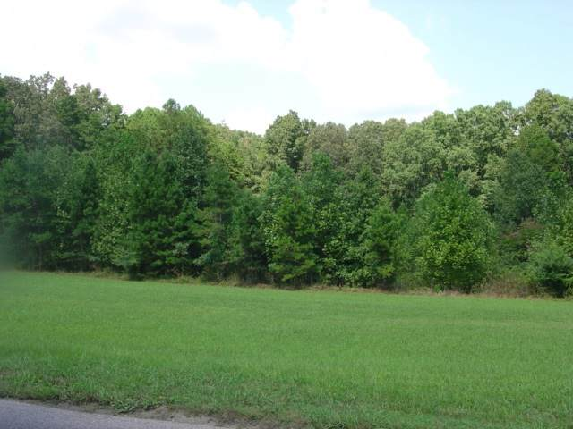 945 YMCA LANE Address Not Published Ln E, Counce, TN 38326 (#9985648) :: Area C. Mays | KAIZEN Realty