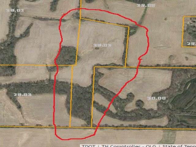 0 Mcnatt Rd, Dukedom, TN 38226 (#10093487) :: J Hunter Realty