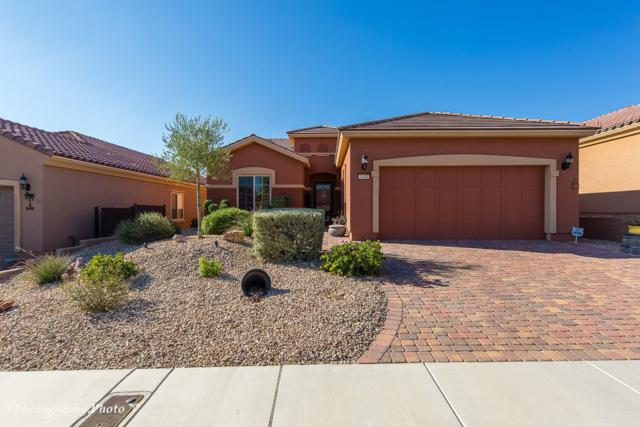 1412 Wheelwright Ct, Mesquite, NV 89034 (MLS #1118309) :: RE/MAX Ridge Realty