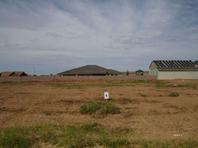 335 Habib Way, Mesquite, NV 89027 (MLS #1118975) :: RE/MAX Ridge Realty