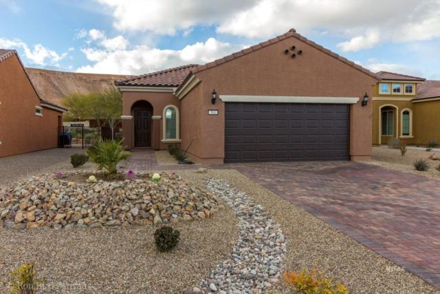 564 Bridle Path Cir, Mesquite, NV 89034 (MLS #1119934) :: RE/MAX Ridge Realty