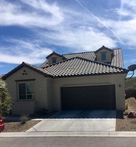 440 Cliffrose Ave, Mesquite, NV 89027 (MLS #1120052) :: RE/MAX Ridge Realty