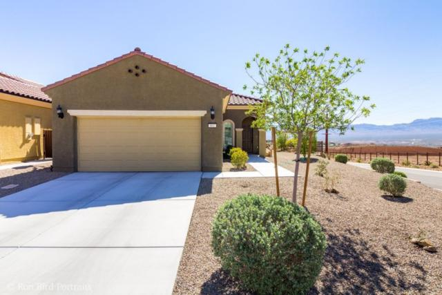 802 Bison Trl, Mesquite, NV 89034 (MLS #1120162) :: RE/MAX Ridge Realty