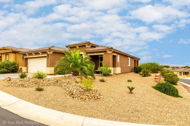 164 Casa Palmero Way, Mesquite, NV 89027 (MLS #1120385) :: RE/MAX Ridge Realty
