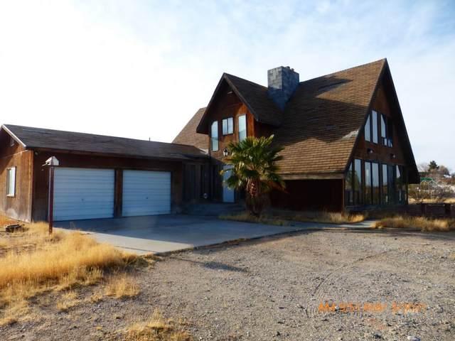 400 Scrub Ln, Bunkerville, NV 89007 (MLS #1122002) :: RE/MAX Ridge Realty