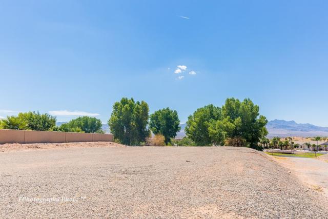 674 Lascala Drive, Mesquite, NV 89027 (MLS #1117049) :: RE/MAX Ridge Realty