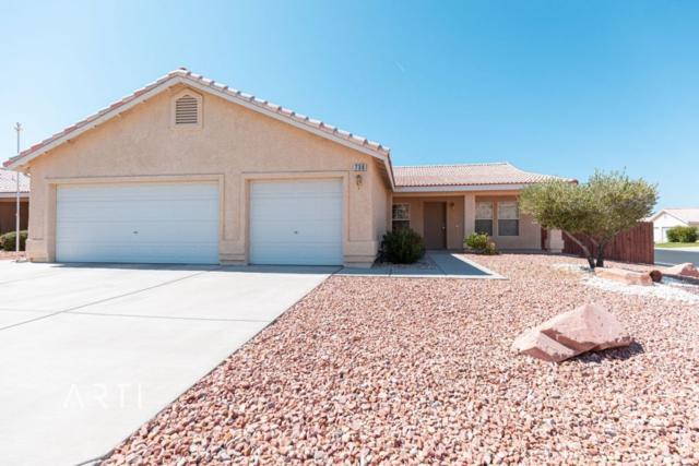 730 Cincy Way, Mesquite, NV 89027 (MLS #1120361) :: RE/MAX Ridge Realty