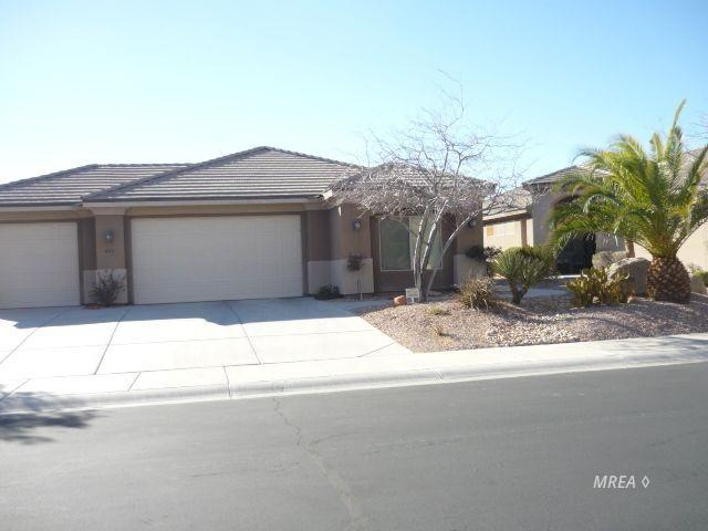 483 Woods Ct, Mesquite, NV 89027 (MLS #1118871) :: RE/MAX Ridge Realty