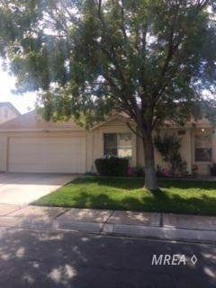 852 Tucson St, Mesquite, NV 89027 (MLS #1120716) :: RE/MAX Ridge Realty