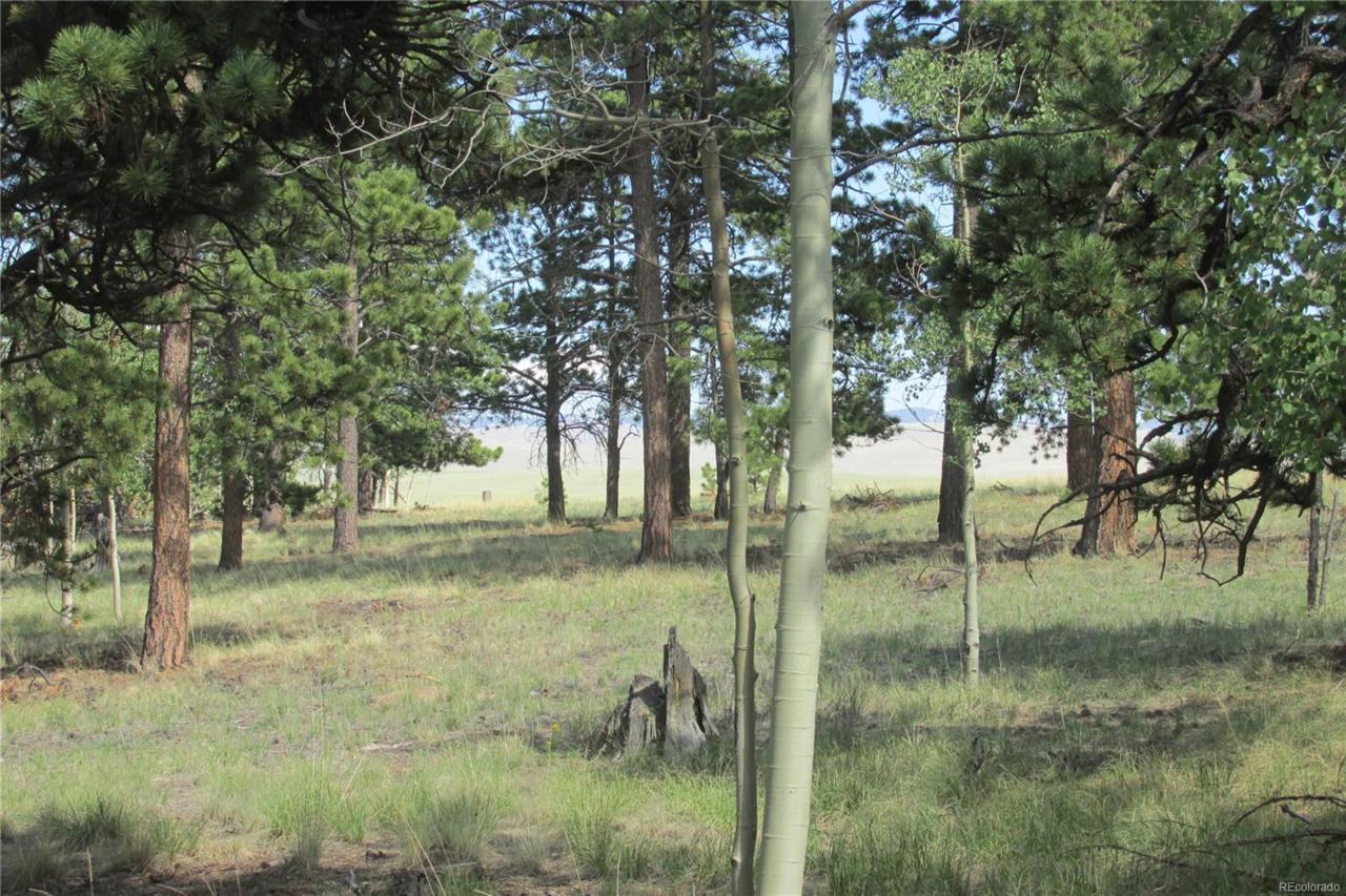 11068 Ranch Road - Photo 1