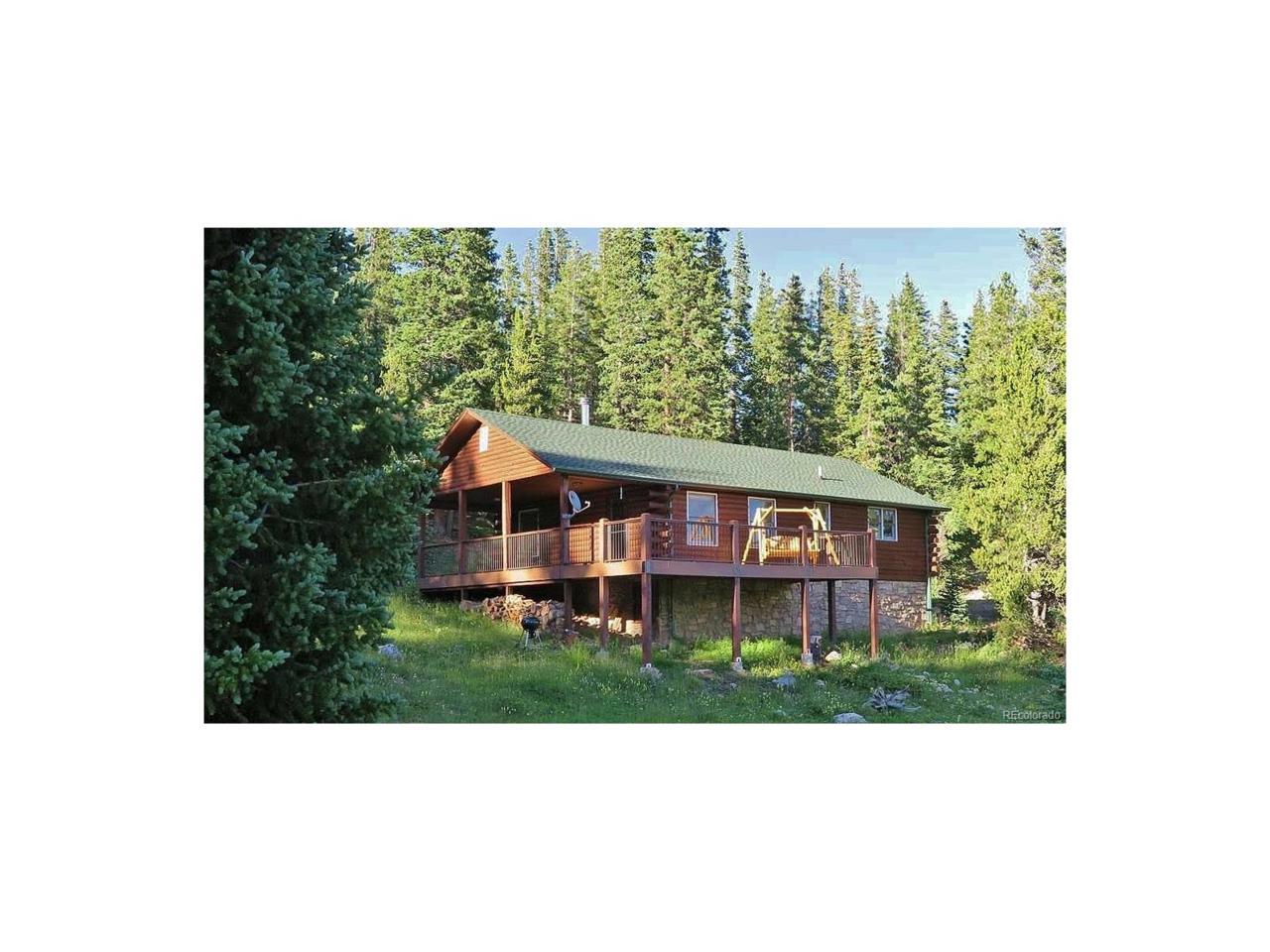 1360 Zebulon Street, Fairplay, CO 80440 (MLS #1844494) :: 8z Real Estate
