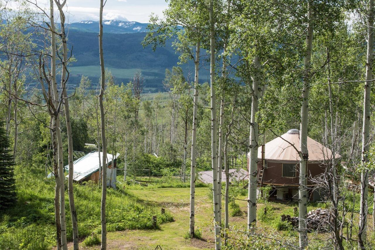 24355 Mcalpin Trail - Photo 1