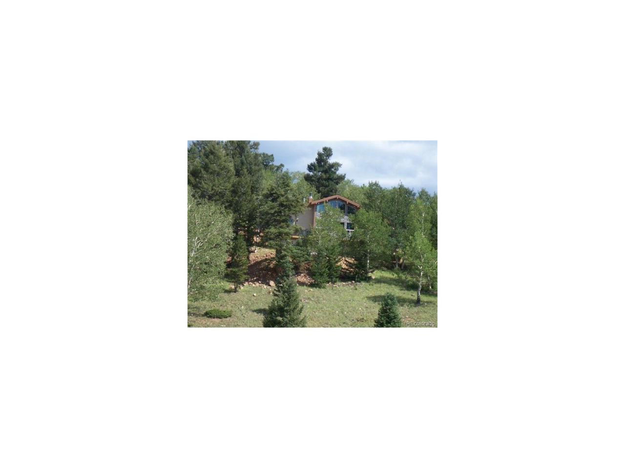 789 Engelman Road, Westcliffe, CO 81252 (MLS #1983171) :: 8z Real Estate