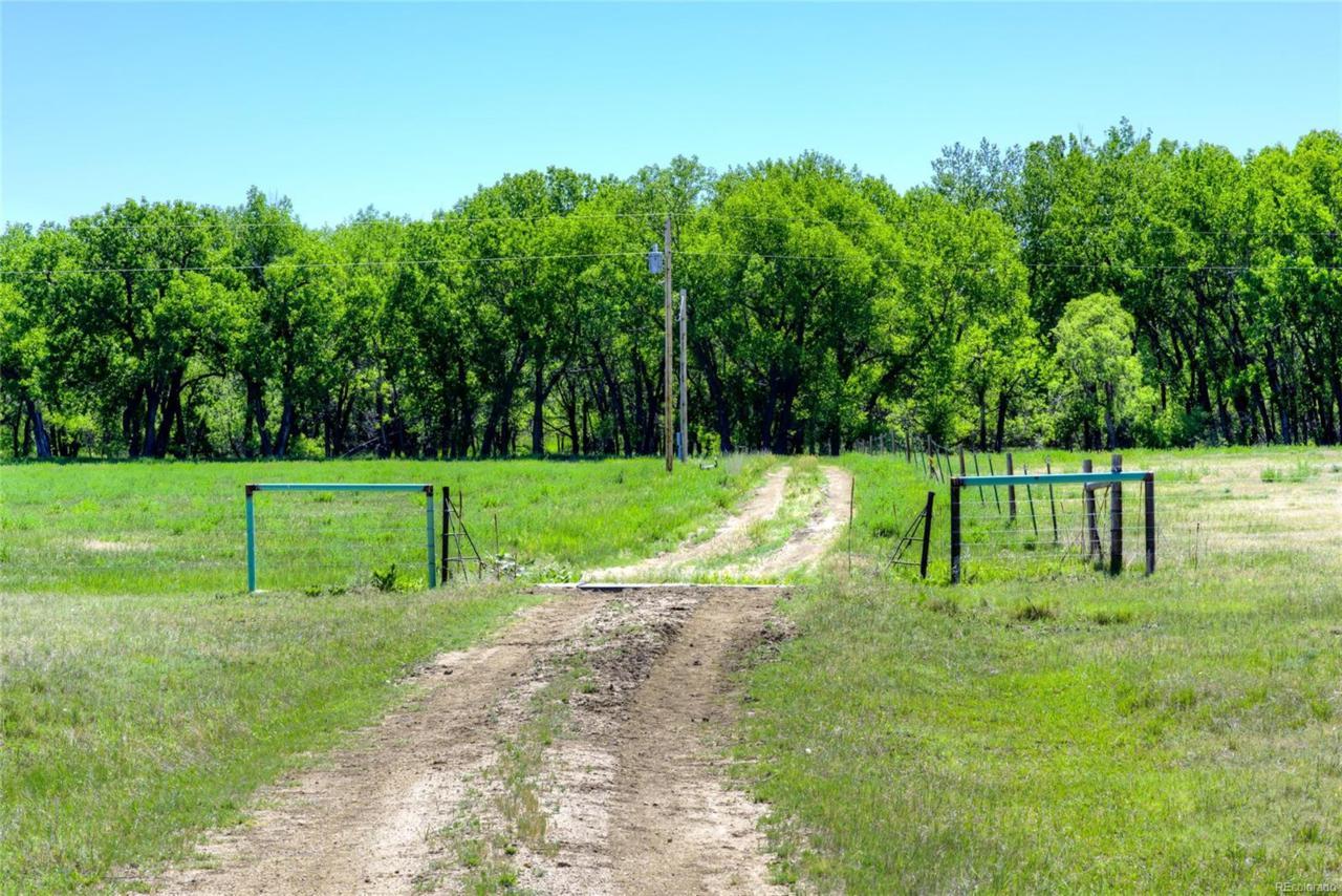 Corner Of County Line Rd & Kiowa Creek - Photo 1