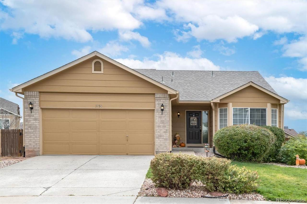 3750 Black Feather Trail - Photo 1