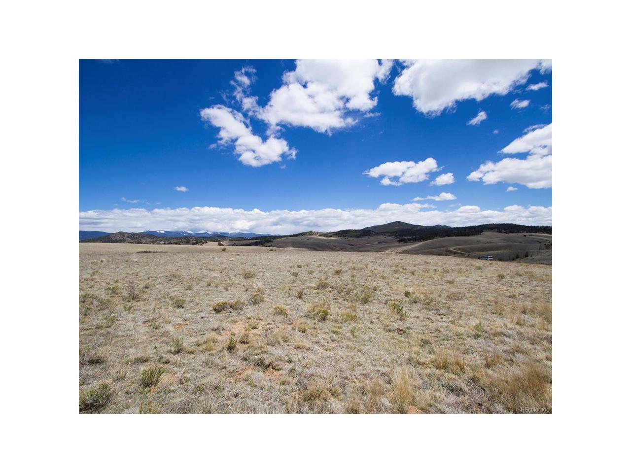 393 Albino Road, Como, CO 80432 (MLS #2092828) :: 8z Real Estate