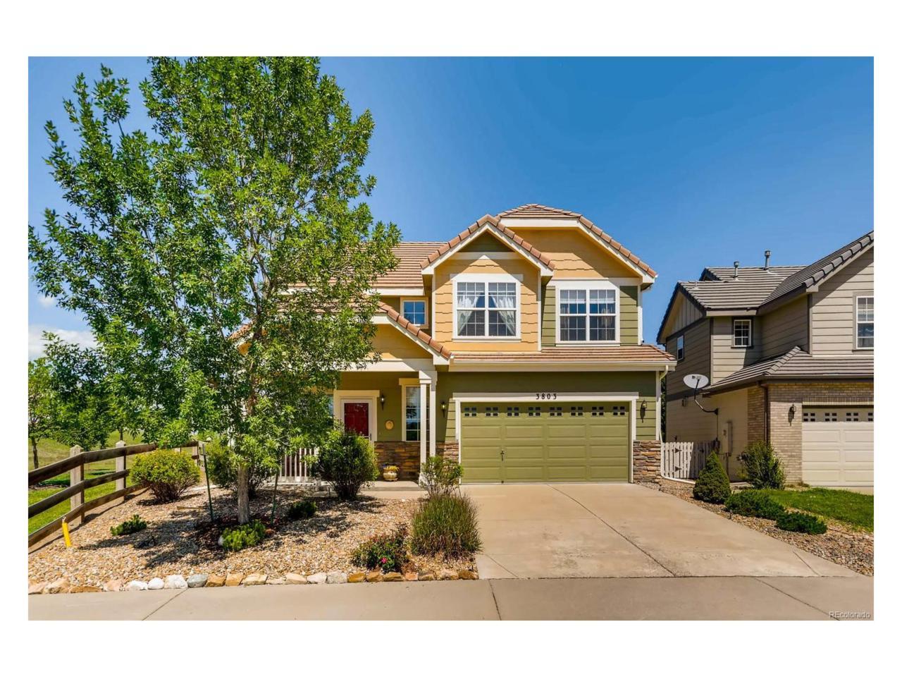 3803 Splendor Lane, Castle Rock, CO 80109 (MLS #2118307) :: 8z Real Estate
