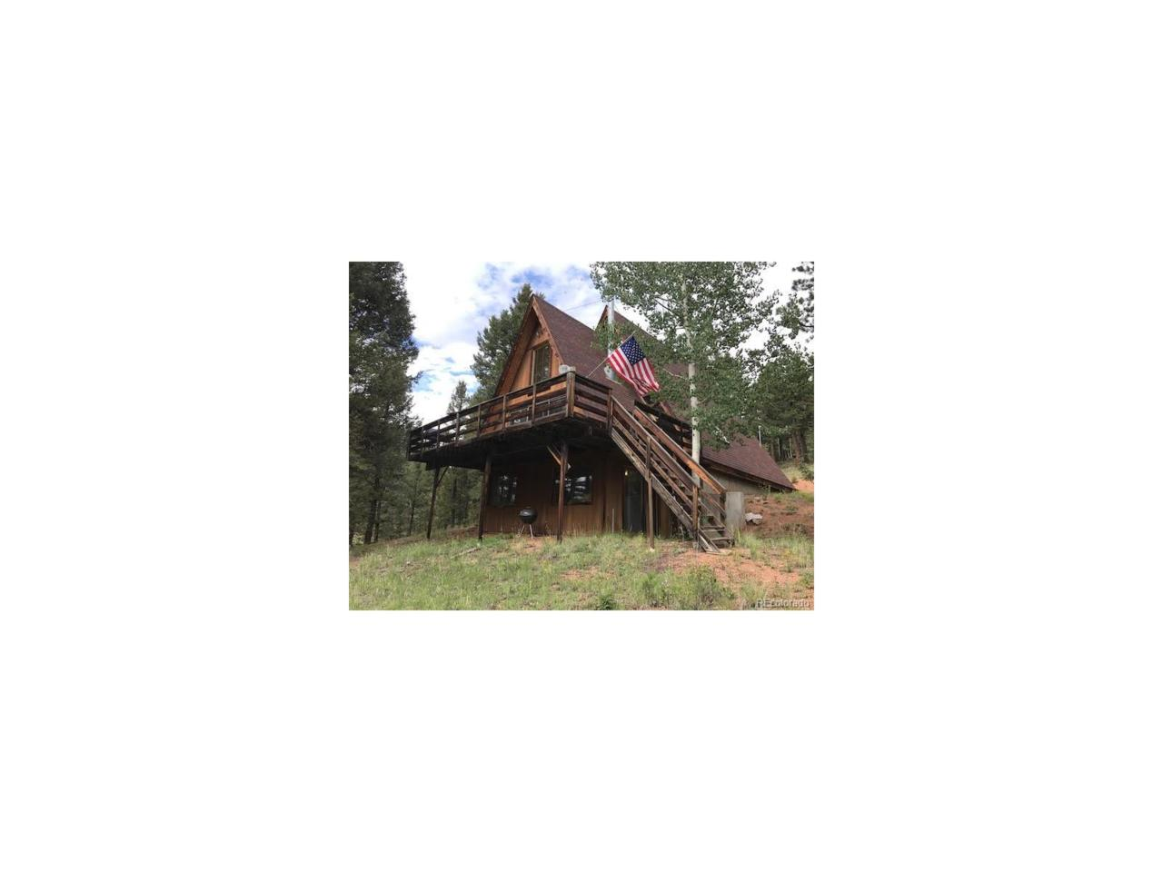 9 Midday Place, Cripple Creek, CO 80813 (MLS #2149027) :: 8z Real Estate