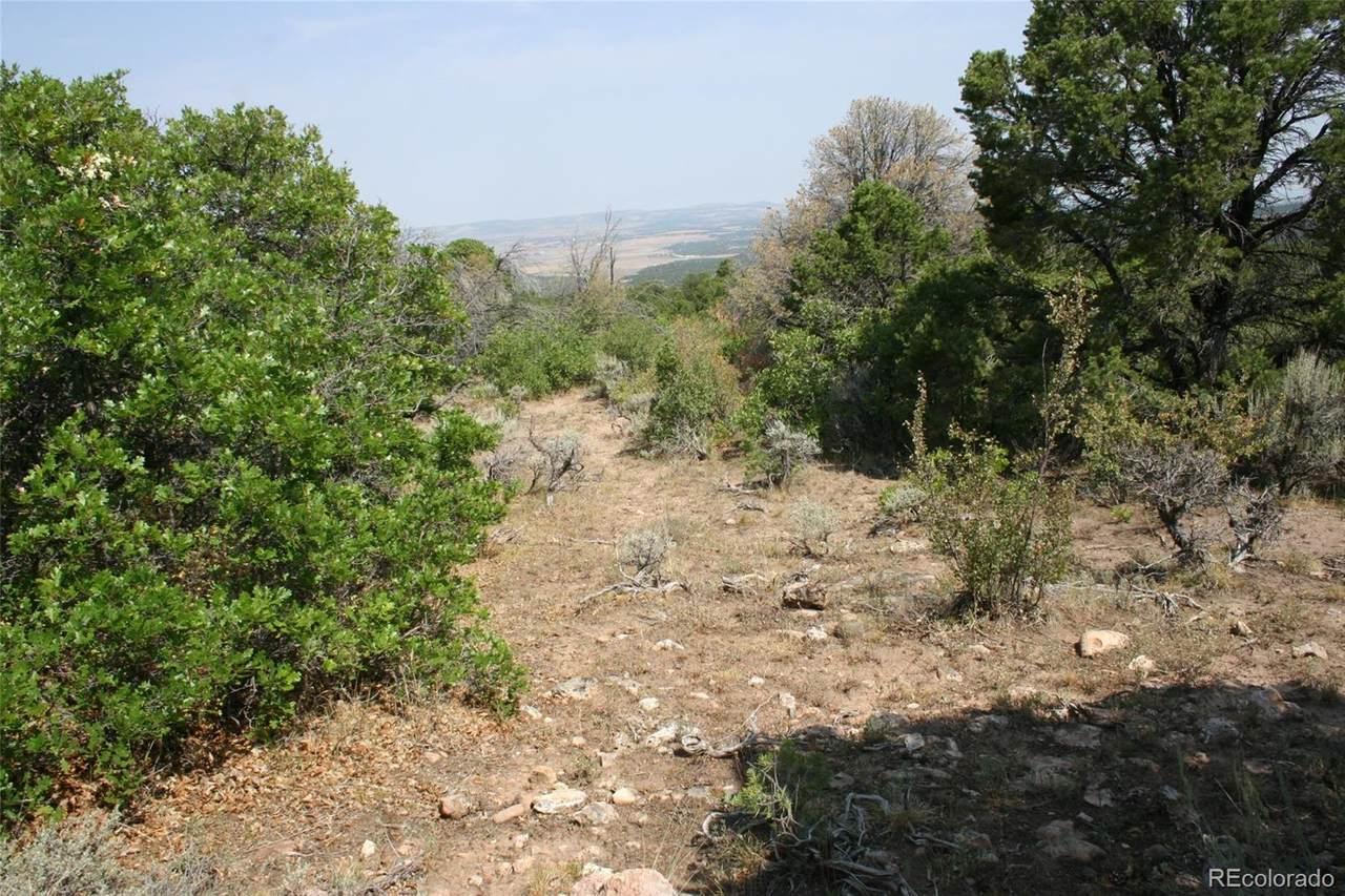 6001 Elk Ranch Road - Photo 1