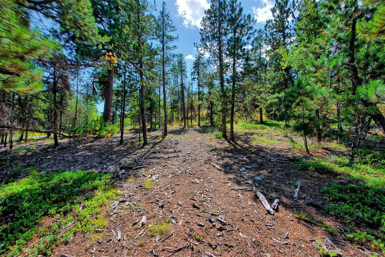 1 Mountain Estate Drive - Photo 1