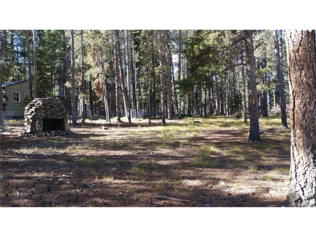 10947 Goodheart Avenue, Conifer, CO 80433 (MLS #2448032) :: 8z Real Estate