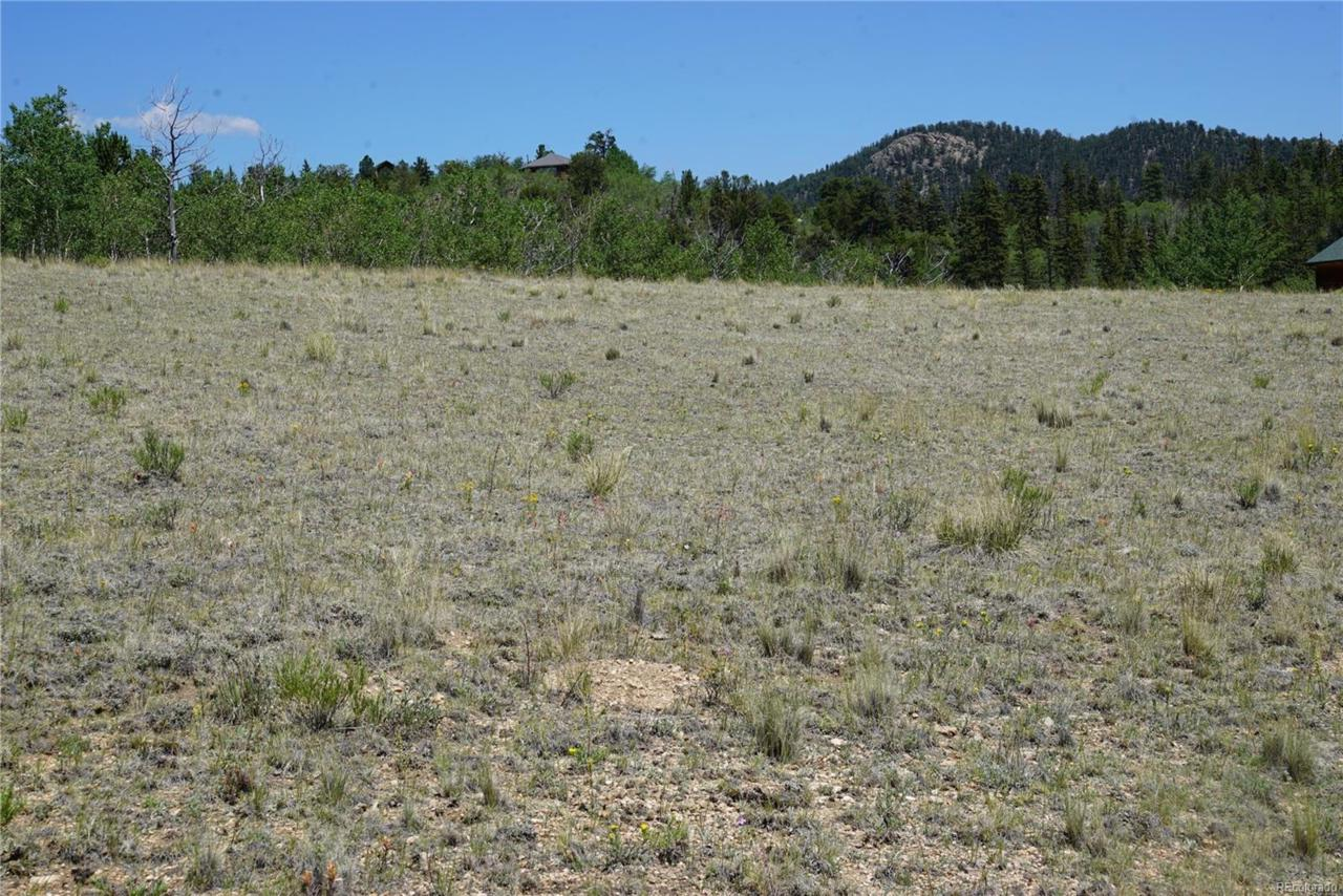 1159 Pinto Trail - Photo 1