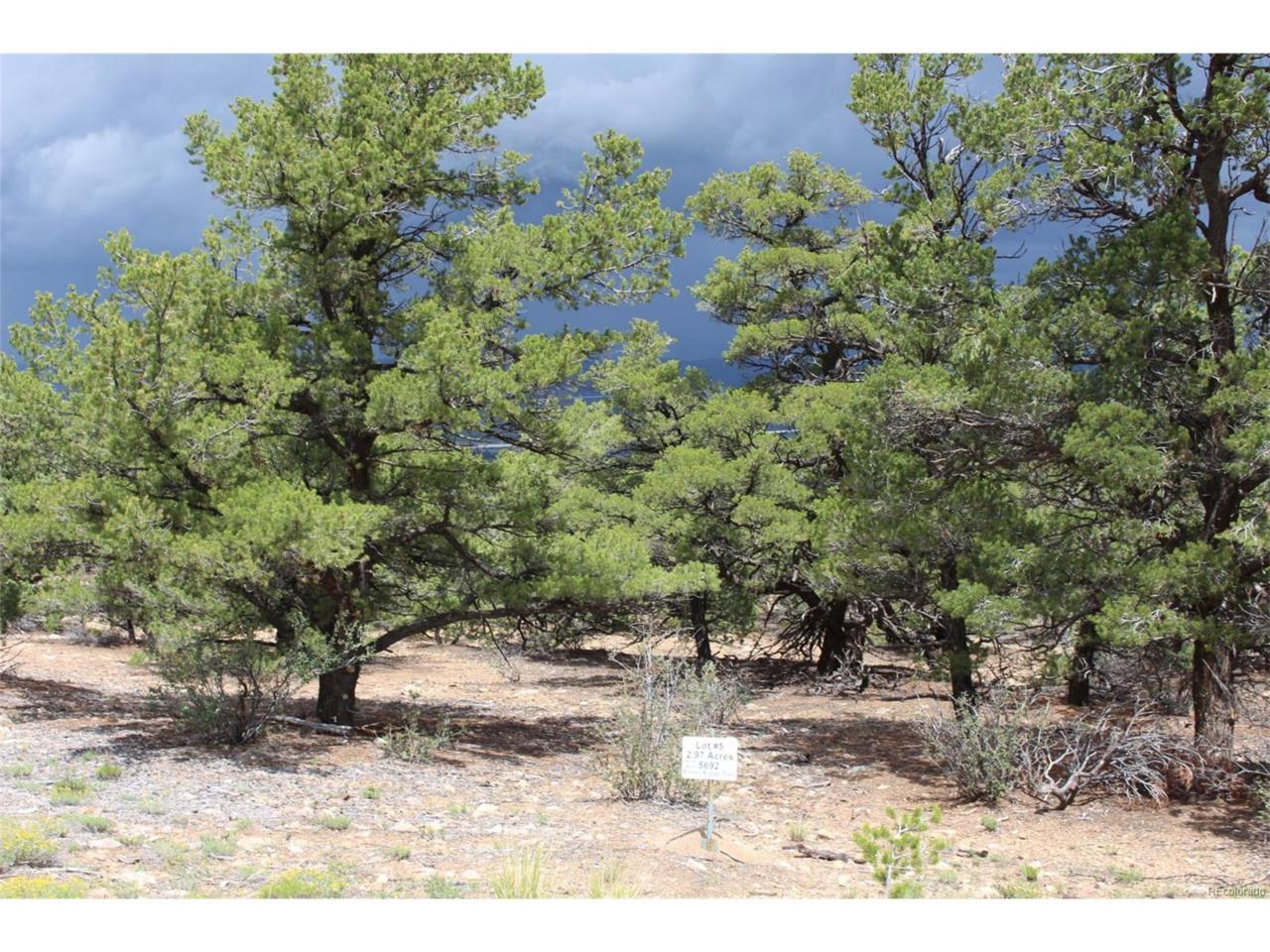 5692 Pinon Ridge Trail, Salida, CO 81201 (MLS #2888841) :: 8z Real Estate