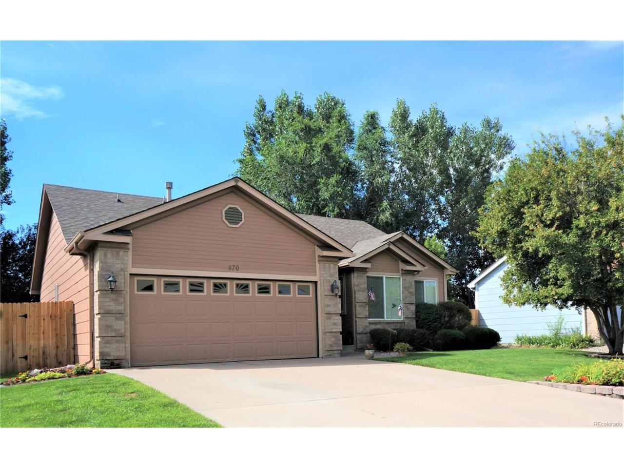 870 Daffodil Street, Fountain, CO 80817 (MLS #3013024) :: 8z Real Estate