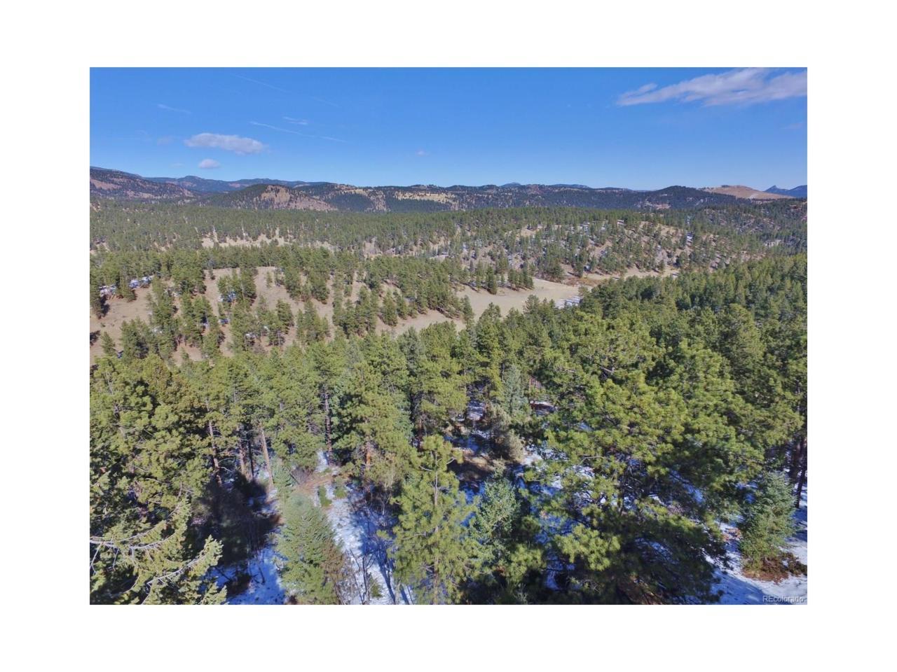 Overlook Drive, Bailey, CO 80421 (MLS #3251874) :: 8z Real Estate