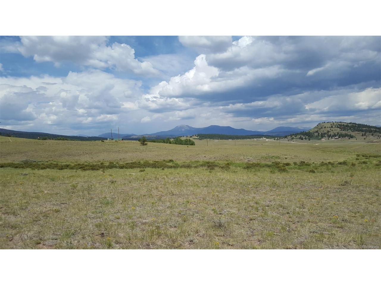 691 Saddle Horn Road, Hartsel, CO 80449 (MLS #3264540) :: 8z Real Estate