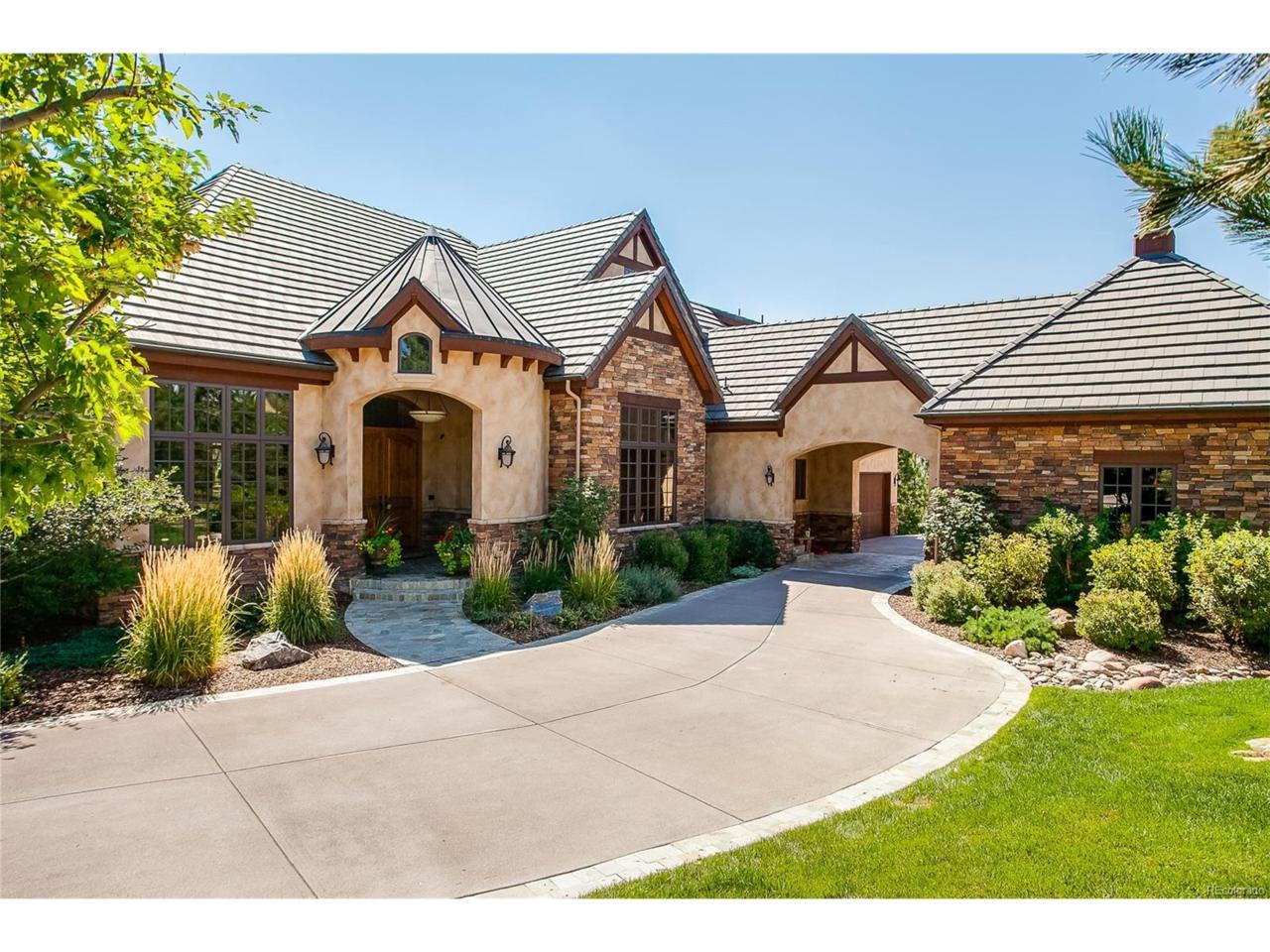 784 International Isle Drive, Castle Rock, CO 80108 (MLS #3355875) :: 8z Real Estate