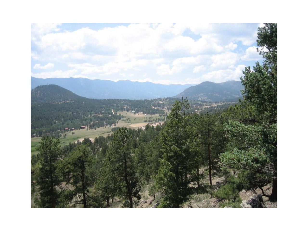 854 Dick Mountain Drive, Bailey, CO 80421 (MLS #3445487) :: 8z Real Estate